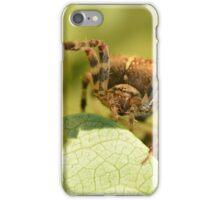 The Predator iPhone Case/Skin
