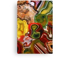 The Beauty in the Earth, Agates Canvas Print