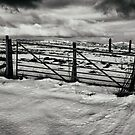 In The Bleak Mid Winter by Lee  Gill