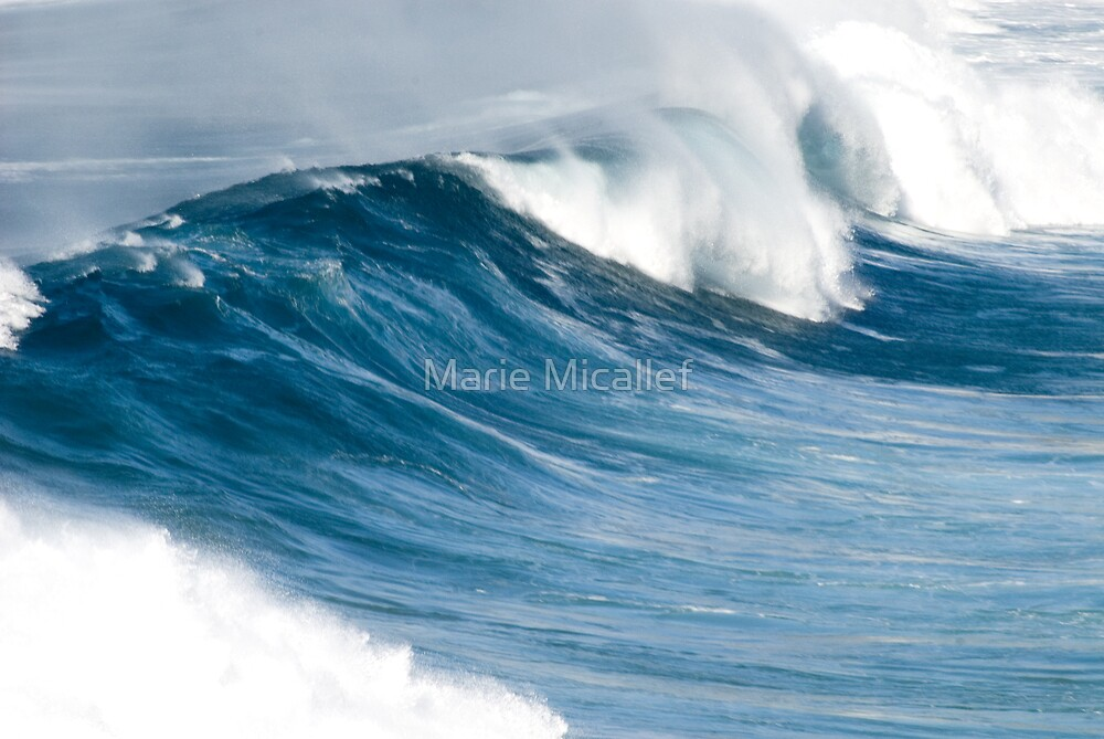 Giant Wave by Shutterbug