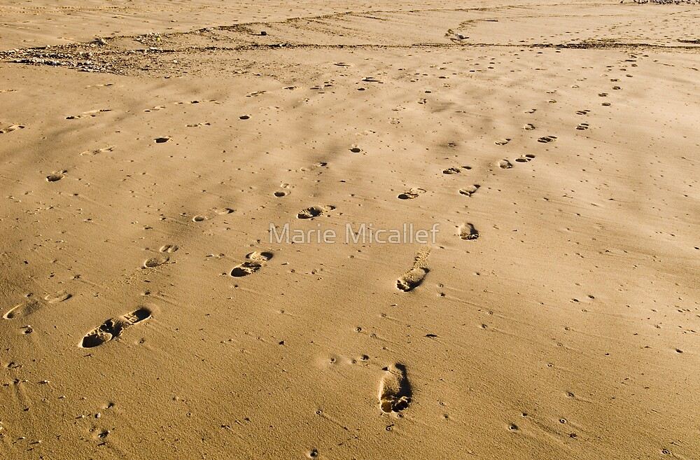 Footprints in Sand by Shutterbug