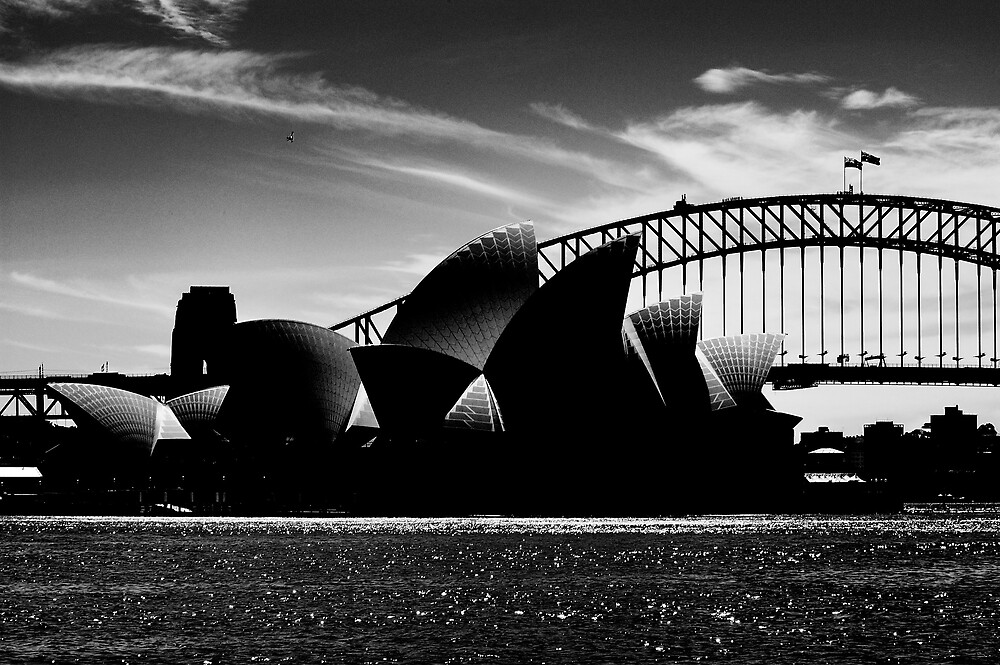 Shiny Opera House by Alex Lau