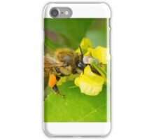 Golden moments in Spring! iPhone Case/Skin