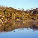 Reflections - Lake Windermere - Tasmania by James Pierce