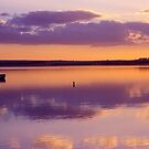 Glow - Swan Bay - Queenscliff by James Pierce