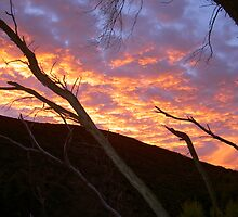 Sunrise in Tasmania by Panther