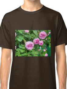 Pink Roses in the Garden 2 Classic T-Shirt