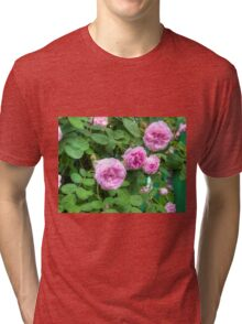 Pink Roses in the Garden 2 Tri-blend T-Shirt