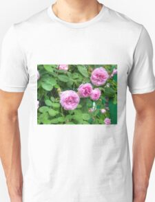 Pink Roses in the Garden 2 Unisex T-Shirt
