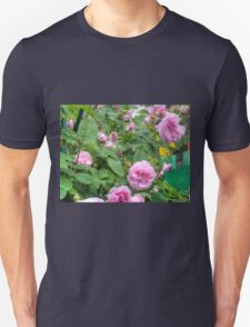 Pink Roses in the Garden 6 T-Shirt