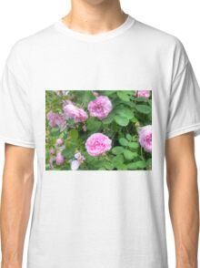 Pink Roses in the Garden 7 Classic T-Shirt