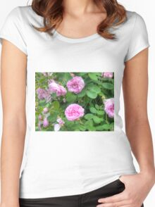 Pink Roses in the Garden 7 Women's Fitted Scoop T-Shirt