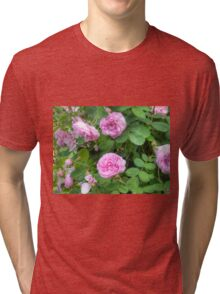 Pink Roses in the Garden 7 Tri-blend T-Shirt