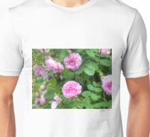 Pink Roses in the Garden 7 Unisex T-Shirt