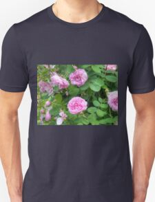 Pink Roses in the Garden 7 T-Shirt