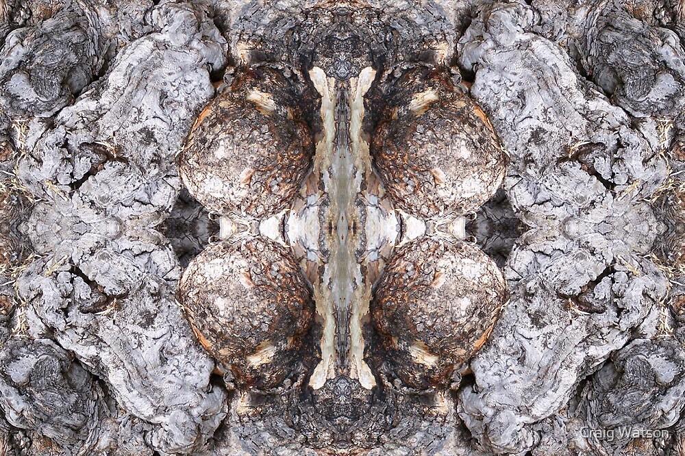 Gum Knurl Kaleidoscope #1 by Craig Watson