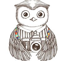 Drawing owl with camera by olarty
