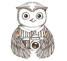 Drawing owl with camera Photographic Print