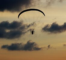 Paraglider sunset by clickwizzclick