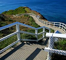 Coastal Path 1 by Mark Snelson