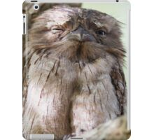 Afternoon Snooze iPad Case/Skin