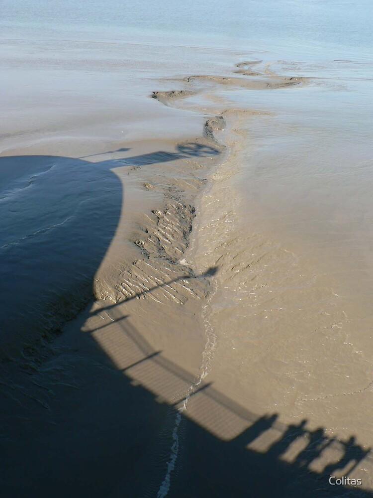 Muddy shade by Colitas