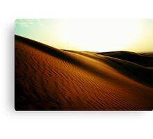 the spice melange Canvas Print