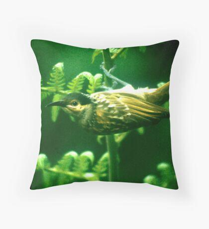 honeyeater Throw Pillow