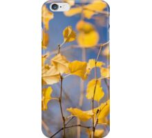 Colors of the Wind iPhone Case/Skin