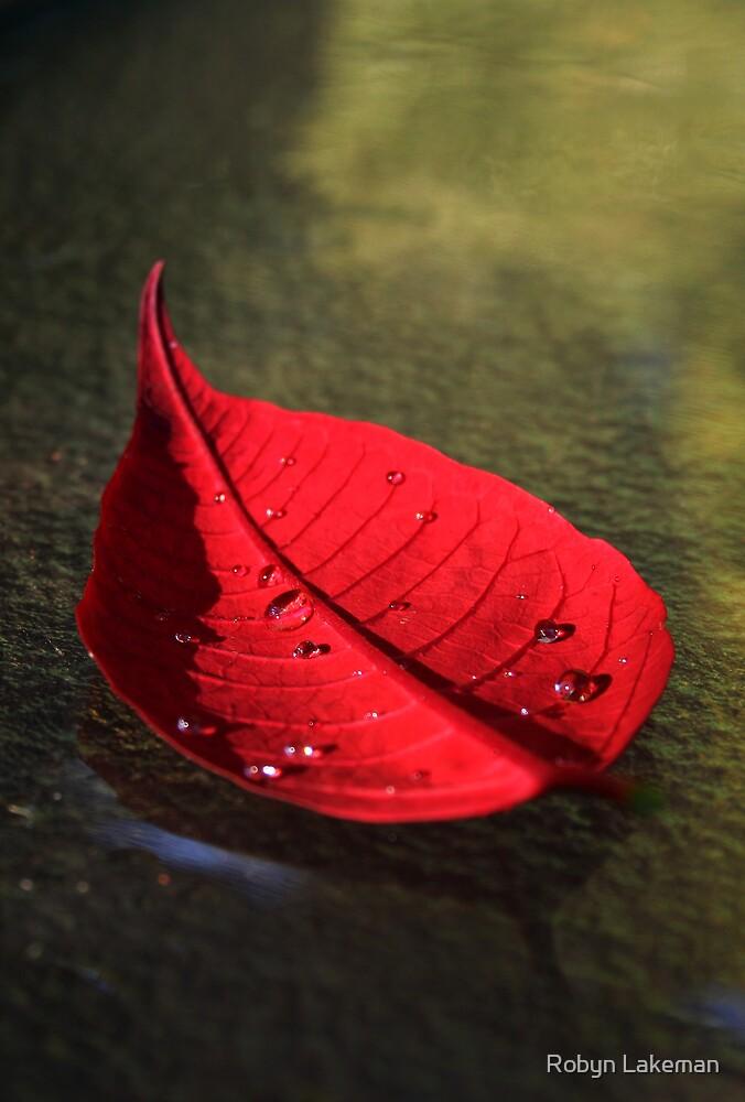 Red Pointsettia by Robyn Lakeman