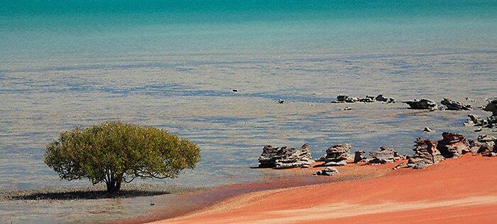 Roebuck Bay by Thomas Kress