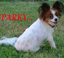 Sparky by Lynn