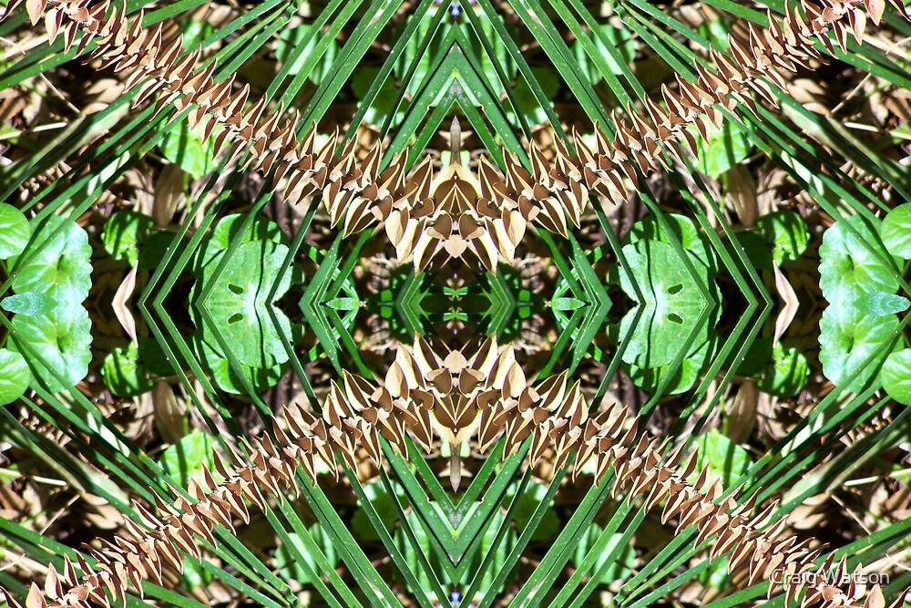 Botanic Kaleidoscope #2 by Craig Watson