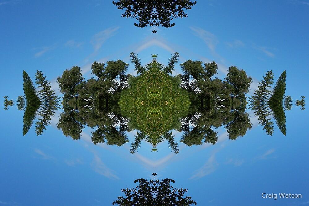 Botanic Kaleidoscope #6 by Craig Watson