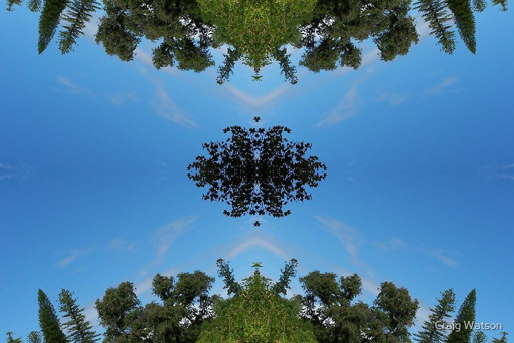 Botanic Kaleidoscope #7 by Craig Watson