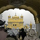 Respect & Love :: Golden Temple, Amritsar by theurbannexus