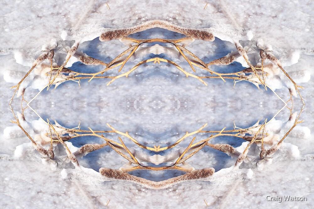 Salt Encrustation Kaleidoscope #2 by Craig Watson