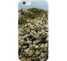 Wild Flowers - Bay of Martyrs iPhone Case/Skin