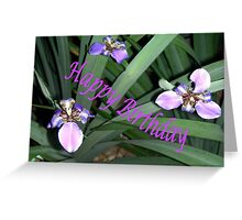 Purple Orchids (Birthday Card) Greeting Card