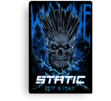 Static Skull Canvas Print