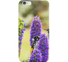 New Holland honey eaters - Warrnambool iPhone Case/Skin