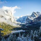 Yosemite in Shadow & Light by Philip Kearney