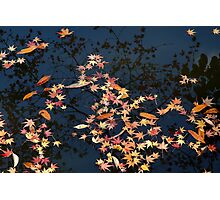 Kyoto reflection Photographic Print