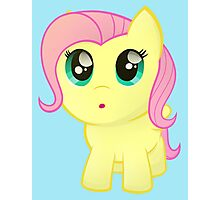 Little Chubby Fluttershy Photographic Print