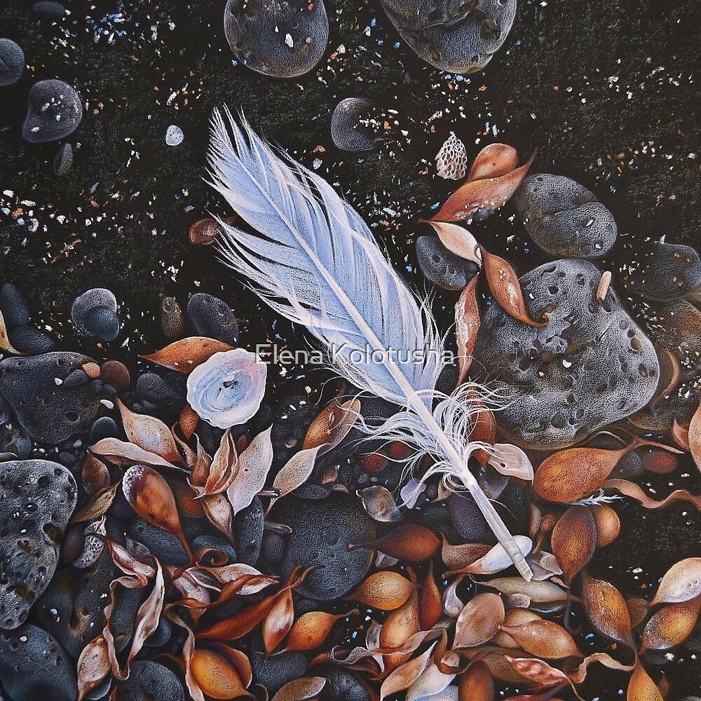 Beach floor, Flinders - detail by Elena Kolotusha
