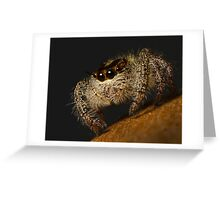 Woolly Predator Greeting Card