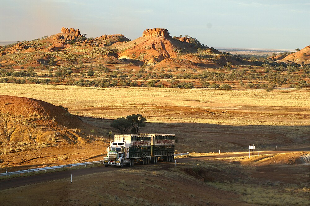 Dramatic Mesa topography between Winton and Boulia, Queensland by Roxy