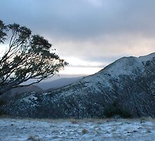 Mt Feathertop by footprint