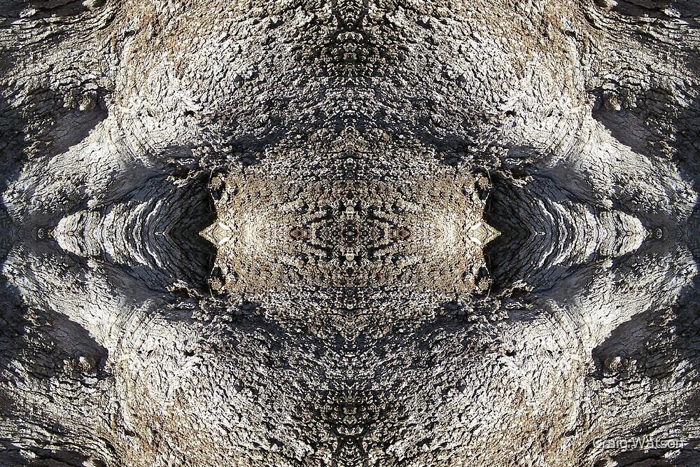 Gnarled Tree Trunk -  Kaleidoscope #3 by Craig Watson