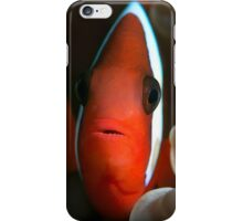 Tomato Clown Fish iPhone Case/Skin